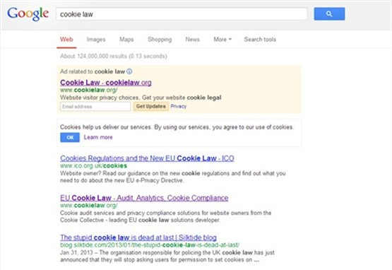 Google Search Cookies
